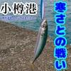 11月13日 小樽 南防波堤は帰りが辛い