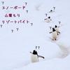 【北海道】スノーボード篭り生活について熟考