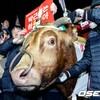 韓国「朴槿恵政権退陣ろうそく集会・苦痛を受けた牛」注目されたいだけのパフォーマンス