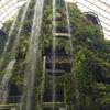 空中庭園 ガーデンバイザベイを見て日本の観光政策に失望した