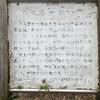 八丈島最後の観光日は富士のち高校野球のち底土のち蕎麦 : The last sightseeing day at Hachijo Island, Mt. Fuji, Baseball, Sokodo and Soba