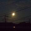 月の出を見に行く