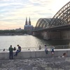 【ドイツ】一度乗ってみたい!ライン川クルーズについて調べてみた【料金】【路線図】