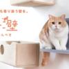 レイアウト変更可能なマグネット脱着式キャットウォール 猫壁(にゃんぺき)をご存じですか!