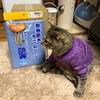 介護用の防水シーツは『ハビナース 耐熱防水デニムシーツ Lサイズ』がお勧めです