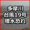 多摩川、氾濫警戒水位超 大田区丸子橋近く 台風19号による大雨 避難所情報