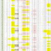 新型コロナウイルス、都道府県別、週間対比・感染被害一覧表 (5月28日現在)