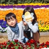 平日の東武動物公園はガラガラ!!乗り物待たずに乗り放題(・∀・)