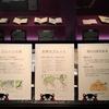 駒込ー東洋文庫ミュージアム〈安政の大地震〉展