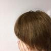 髪を切った勢いではてなブログを投稿している方を次々にフォローしてみた