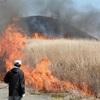 春招く待望の炎 阿蘇市で一斉野焼き