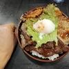 【焼肉丼たどん】総重量800gの焼肉丼!秋葉原で上質な肉をたっぷり堪能!