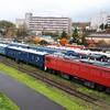 【小樽市総合博物館】40両以上の多種多様な国鉄形車両が展示してある博物館!
