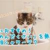 お風呂めんどくさい!を解決する夏にオススメな時短シャワーの浴び方