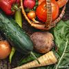 妊活中の女性必見!「妊娠前」の野菜摂取で早産リスク低下? 豪・研究
