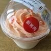 赤肉メロンホイップのミルクプリン@セブンイレブン