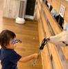 東京のど真ん中で電車観覧後に大手町牧場で動物に触れ合うプラン