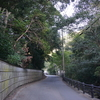 江戸時代の家屋が美しい!小さなわびさびの集落「花沢の里」