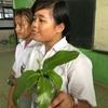 【環境教育】自然を感じよう。スマトラの高校で自然観察会?をやってみた。