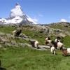 山ガールにおすすめ スイスのトレッキング