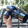 旅散歩 ニコンのマクロレンズ、AI Micro-Nikkor 105mm f/2.8S を D810A につけて、渋谷氷川神社を撮影してみた。
