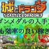 【城とドラゴン】ドラゴンメダルの入手方法は?最も効率のいい稼ぎ方はコレ!
