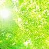 再生可能エネルギーの普及の鍵のひとつ、人工光合成に注目