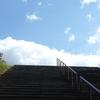 山茶花・天国への階段・太陽と雲の戯れ 一夜明けた生身の自分とは