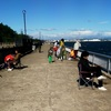碧南海釣り公園  釣果
