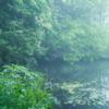 犀川の岸辺・室生犀星:故郷はいつでも親しく迎えてくれる
