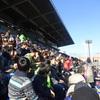 日本でのスーパーラグビー観戦