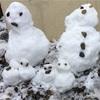 雪遊び⛄️