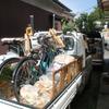 新規就農、セイタカアワダチソウの洗礼。