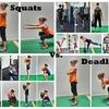 スクワットはデッドリフトと同等に効果的なのか(スクワットとデッドリフトの間の運動パターンとリフティングの運動力学{バーの位置と握力}の相違により、筋力を産生する要因{筋の動員と選択、筋張-張力関係、引く動作の筋の角度}が異なる)