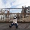 「破天荒」の意味を日本人の6割が誤解している!?破天荒の意味と使い方。