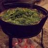 六本木でジビエなら「 またぎ 」!囲炉裏を囲んでいただく絶品ジビエ料理!特に猪鹿鍋の美味さが尋常じゃない!