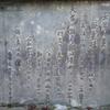 「おはん」の文学碑の碑文(紅葉谷公園)