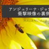 「世界ミツバチの日」のアンジェリーナ・ジョリーの衝撃映像の裏側