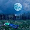 【まとめ】寝てる時に謎な現象に陥ったんだけど【明晰夢】