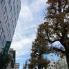 茨城県水戸市に住んでいたことはほんとにたまに思いだすだけ