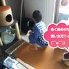 息子くんがココちゃんのトイレ掃除をするものの、ココちゃんに呆れられるwww(379日目)