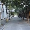 新宿西口付近を「お写んぽ」 その3