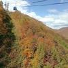 東京~新潟 週末小旅行 ④苗場の日本最長ロープウェイで紅葉にまみれる