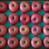 🍎真田幸村の郷のリンゴが届いた🍎