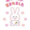 育児日記 〜出生届提出しました!!赤ちゃんが生まれたら行う手続き〜