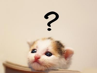 よくある質問【飼い主様向け】-その他