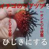 """【改造】イチゴのツブツブを""""ひじき""""に変えたらどうなるか?"""