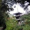 尼となった中将姫が住んだ場所 奈良・當麻寺護念院