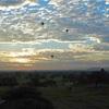 タイ、ミャンマー旅行 DAY7*バガン 朝日を見るためまたパゴダ(仏塔)にのぼる 気球に乗りたい
