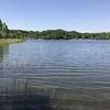 天気によって釣り方を変える バスフィッシング